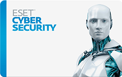 ESET Cybersecurity - 2 Computers / 1 Year License