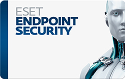 ESET Endpoint Security Business (Windows PC or Mac OS) - 8 Computers / 1 Year