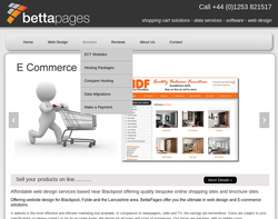 Screenshot of the Betta Pages Web Design homepage
