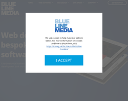Screenshot of the Bluelinemedia homepage