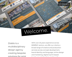 Screenshot of the Diablo Design and Multimedia homepage