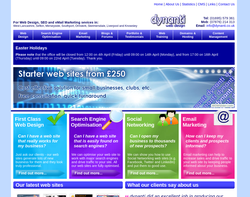 Screenshot of the dynanti web design consultants homepage