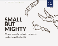 Screenshot of the Jolora Web Design and Internet Marketing homepage