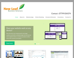 Screenshot of the New Leaf Business Solutions                        homepage