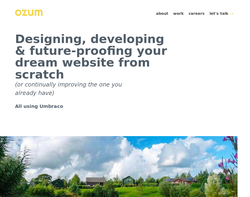 Screenshot of the Ozum Ltd homepage