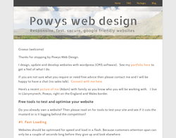 Screenshot of the Powys web design homepage