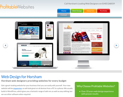 Screenshot of the Profitable Websites homepage