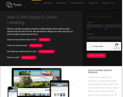 Screenshot of the Pynto Limited homepage