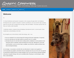 Screenshot of the Quantic Computers LTD homepage