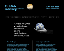 Screenshot of the RichFish Web Design homepage
