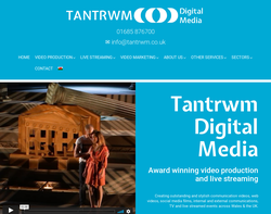 Screenshot of the Tantrwm Limited homepage