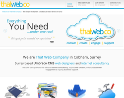 Screenshot of the .That Web Company Ltd homepage