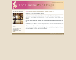 Screenshot of the Top Banana Web Design homepage