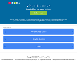 Screenshot of the Vines Business Services homepage