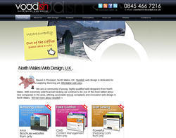 Screenshot of the Voodish homepage