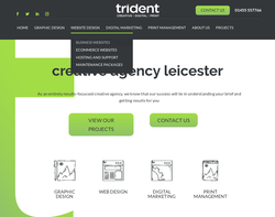 Screenshot of the Trident homepage