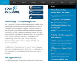 Screenshot of the Your e Solutions homepage