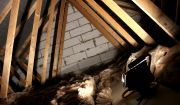 Tra3048-dark-attic-insulation.jpg